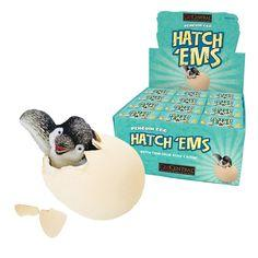 Hatch Ems Penguin Egg