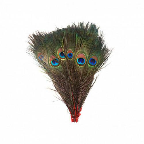 Peacock Feathers 35in-40in Red