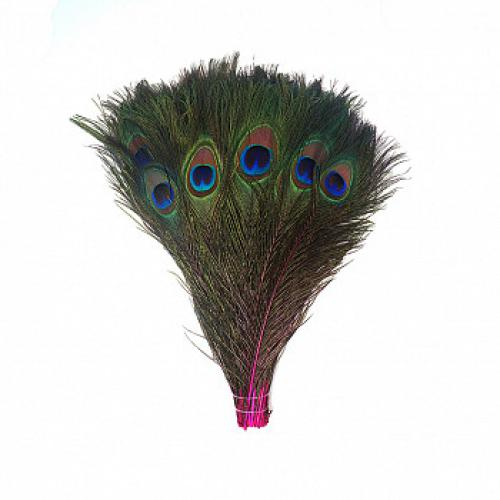 Peacock Feathers 35in-40in Shocking Pink