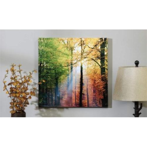 Canvas Print Sunlight In The Forest