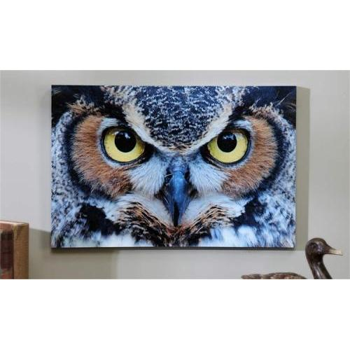Canvas Print Owl Eyes