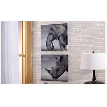 Canvas Print Photographic Elephant & Rhino (each Piece Sold Separately) (discontinued)