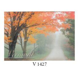 Postcard Fall Foggy Road