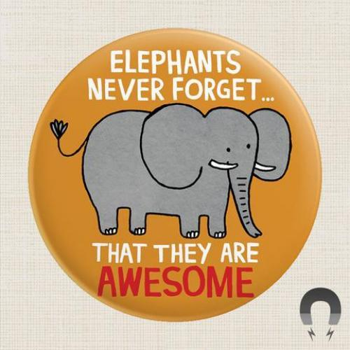 Magnet - Elephants Are Awesome