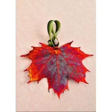 Ornament Sugar Maple Iridescent (red)