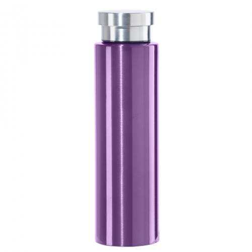 Travel Water Bottle Stainless Steel Sport Cosmo Lustre 17oz Purple