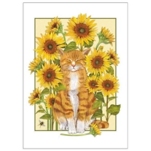 Birthday - Cat & Sunflowers