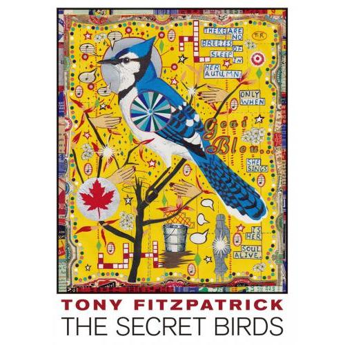 Boxed Cards - Fitzpatrick - Secret Birds