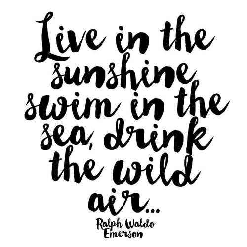 Any Occasion - Live In The Sunshine, Swim In The Sea, Drink The Wild Air - Ralph Waldo Emerson - Blank Inside