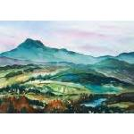 Vermont Artist - Camels Hump From East