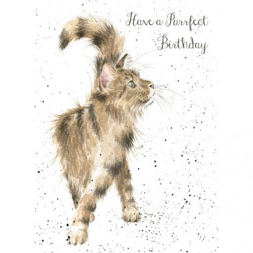 Birthday - Just Purrfect