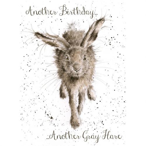 Birthday - Little Gray Hare