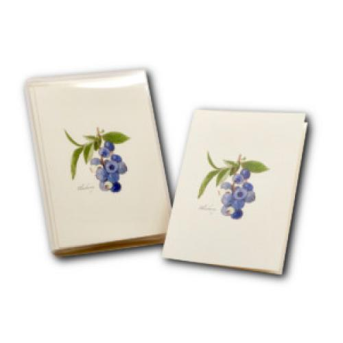 Boxed Card - Blueberry