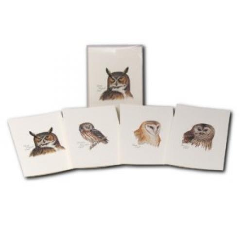 Boxed Card - Peterson Owl Assortment