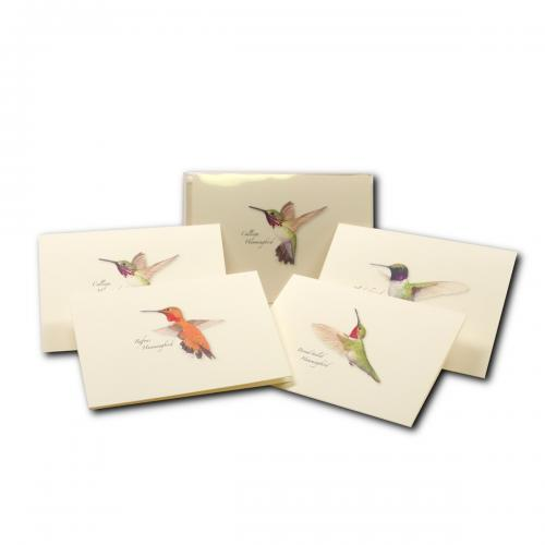 Boxed Card - Hummingbird Assortment