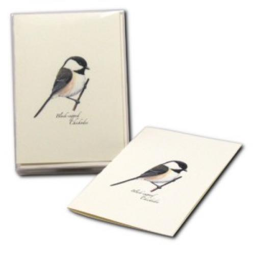 Boxed Card - Black Capped Chickadee