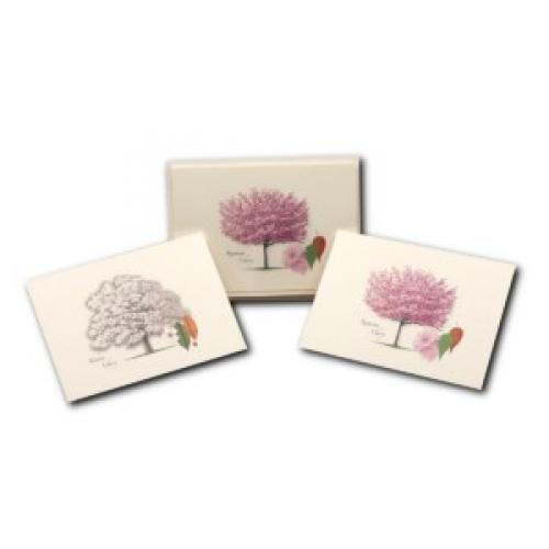Boxed Card - Cherry Tree Assortment