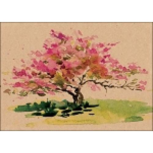 Boxed Card - Cherry Blossom Tree - Enough Said