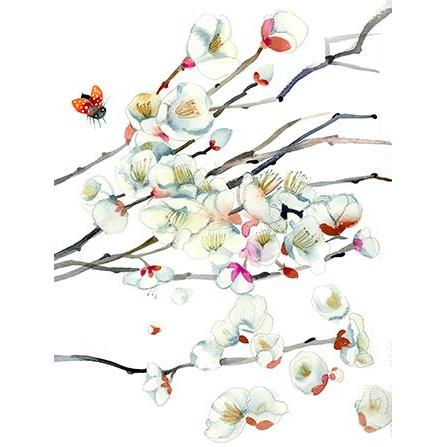 Any Occasion - Cherry Blossoms And Ladybugs