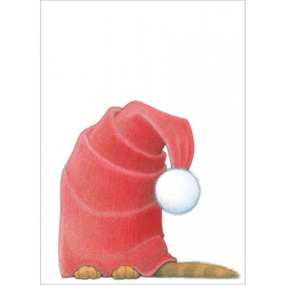 Boxed Cards - Christmas - Cat In The Hat