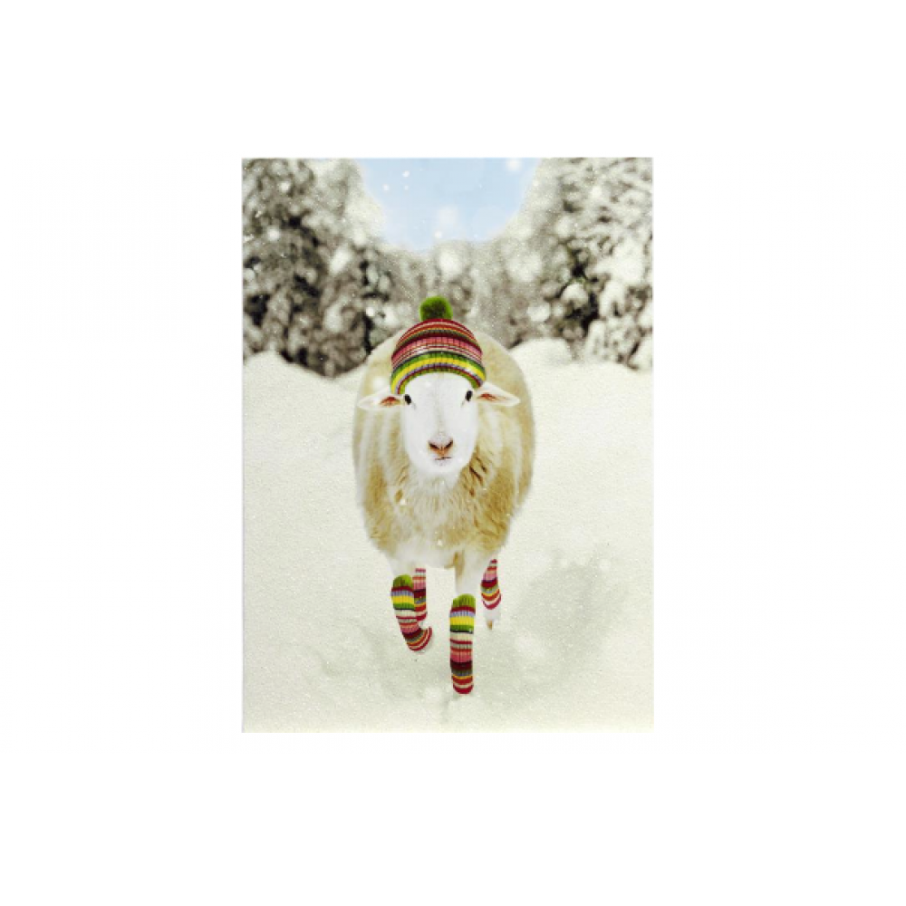 Christmas - Sheep In Lweg Warmers And Hat