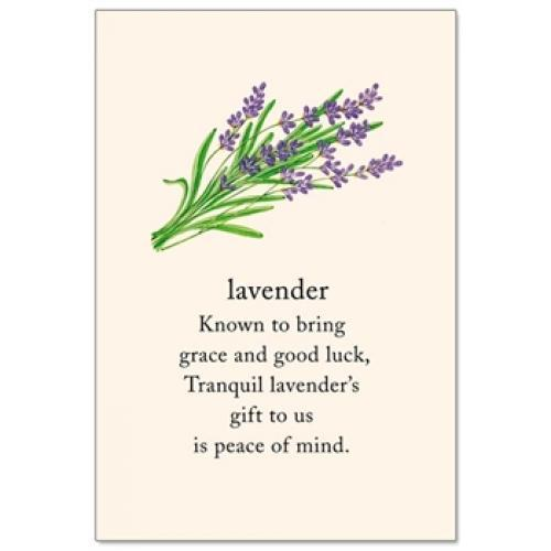 Any Occasion - Lavender Support
