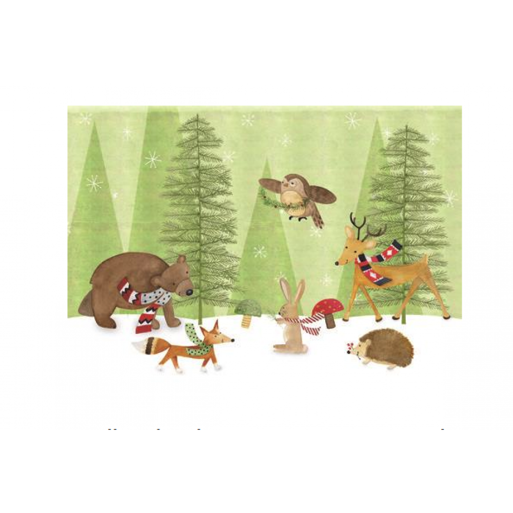 Boxed Cards - Christmas - Woodland Critters In Scarves