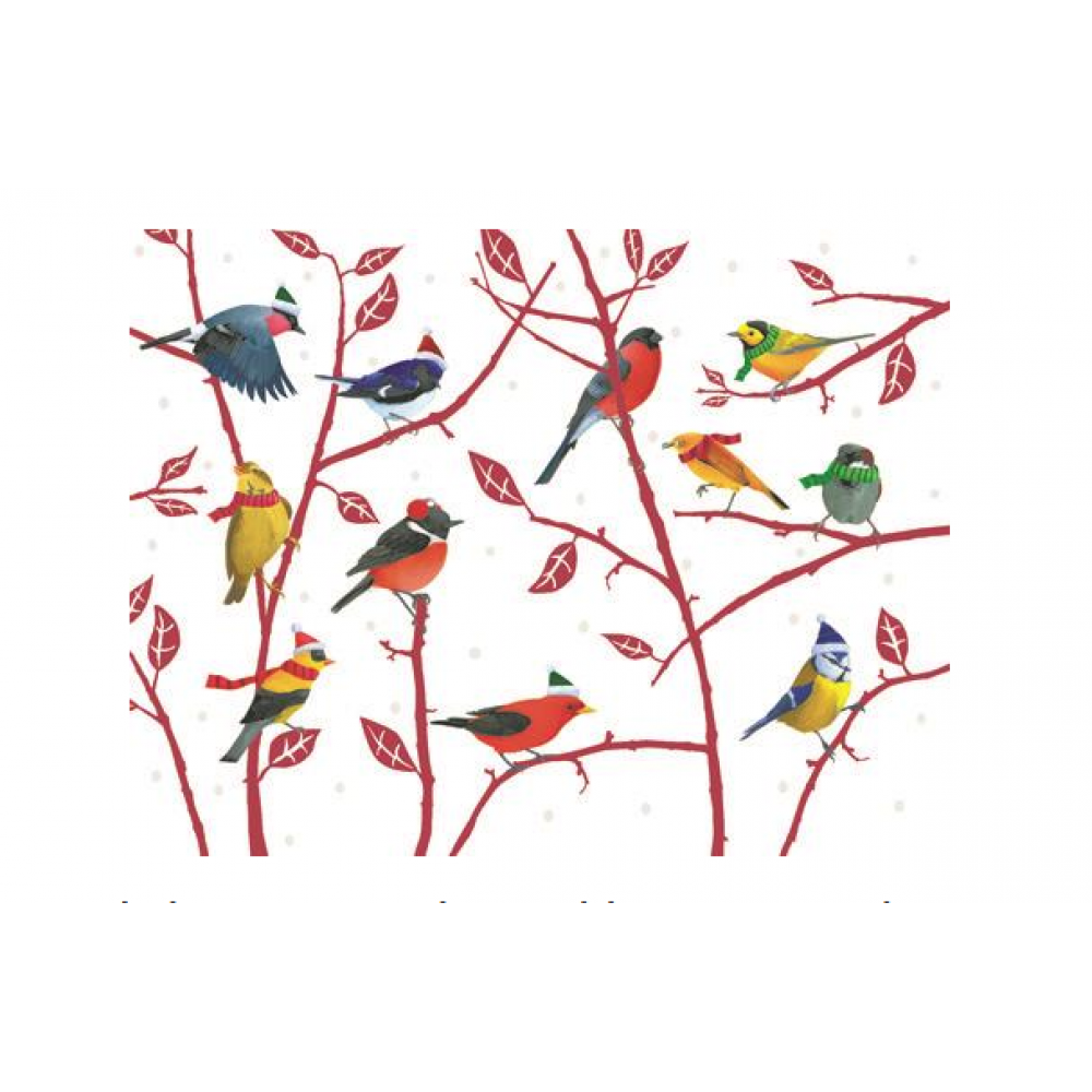 Boxed Cards - Christmas - Birds On Branches