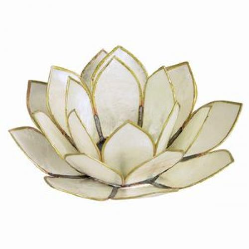 Tea Light Holder Capis Shell Lotus White