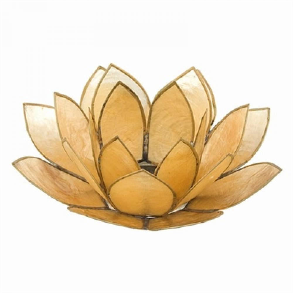 Tea Light Holder Capis Shell Lotus Golden