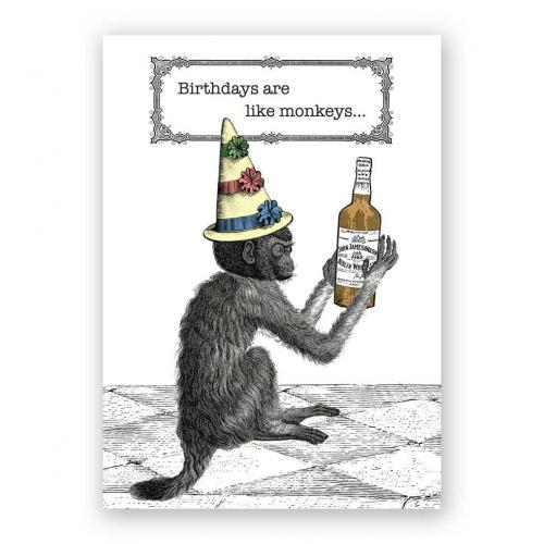 Birthday - Drunk Monkey