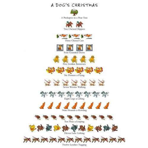Chistmas - Dog\'s Christmas
