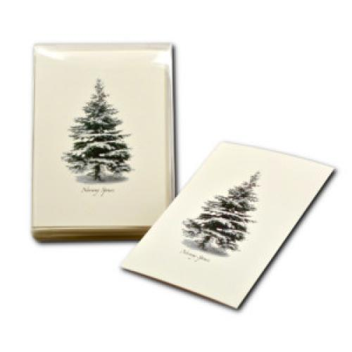 Boxed Card - Winter Spruce