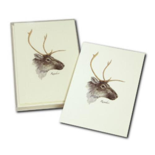 Boxed Card - Reindeer