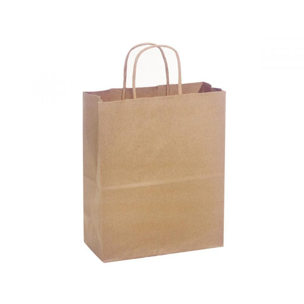 Gift Bag Cub Natural Kraft Recycled
