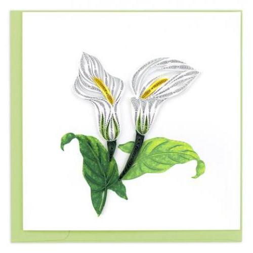 Any Occasion - Quilling Card - Calla Lily