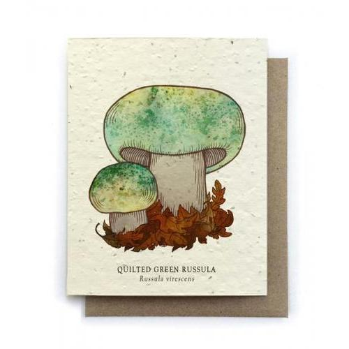 Any Occasion -  Quilted Green Russula