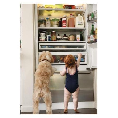 Birthday - Baby With Dog Fridge