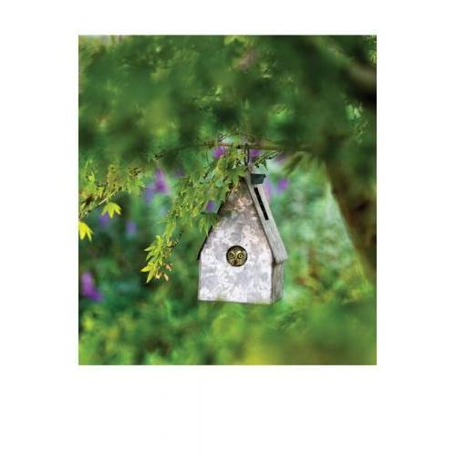 New Home - Owl Birdhouse