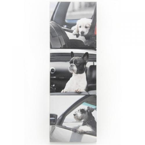 Canvas Print Dog In Car 3 Assorted Styles ( Sold Separately )