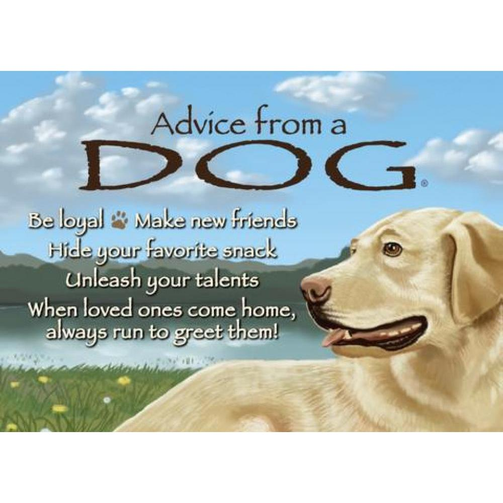 Dog Advice Magnet