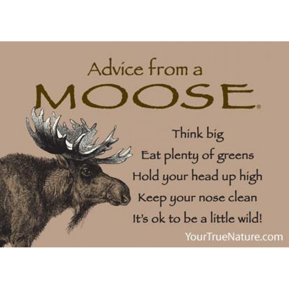 Moose Advice Magnet