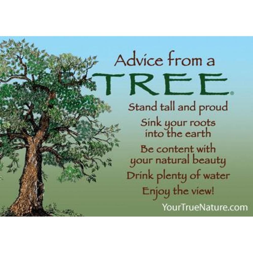 Tree Advice Magnet