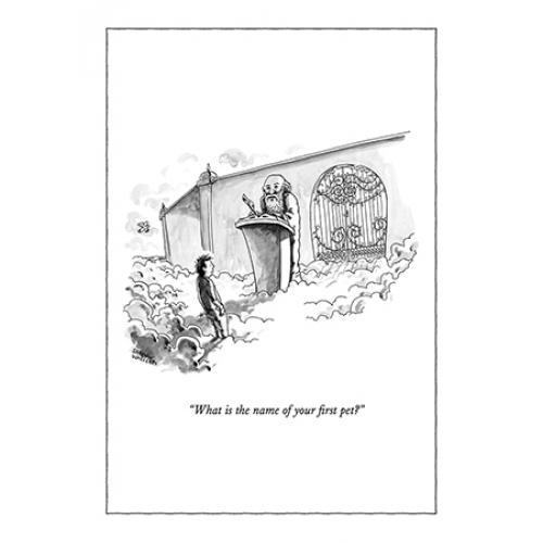 Any Occasion - New Yorker - First Pet