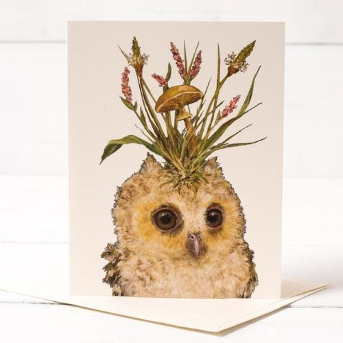 Any Occasion - Louisa May Baby Owl Card