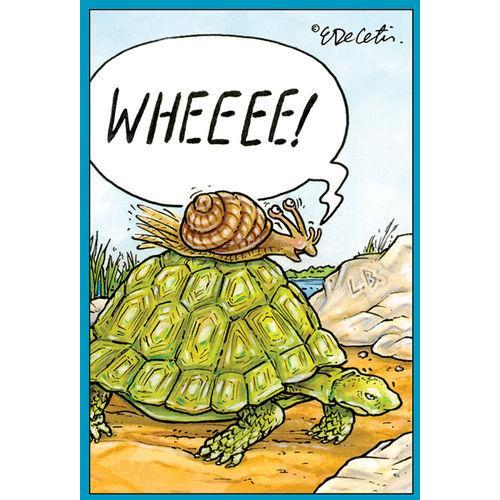 Birthday - Eric - Turtle And Snail