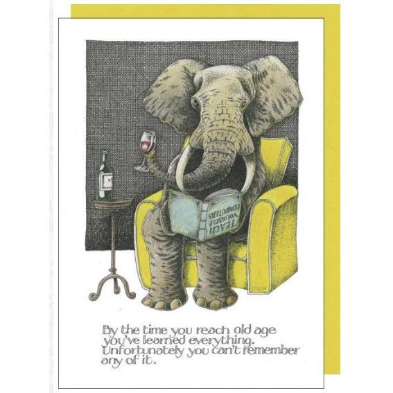 Any Occasion - Old Elephant