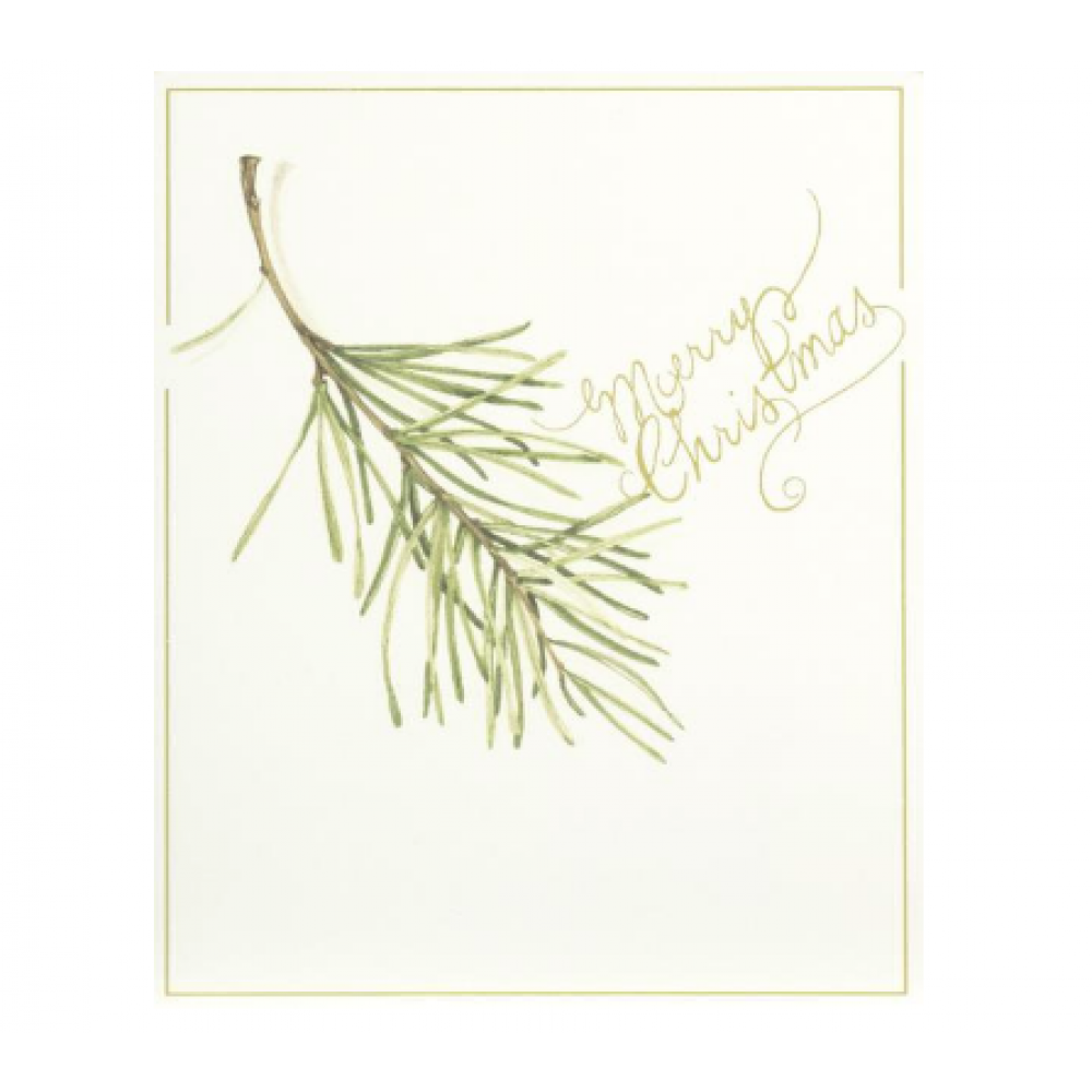 Boxed Card - Christmas - Pine Sprig