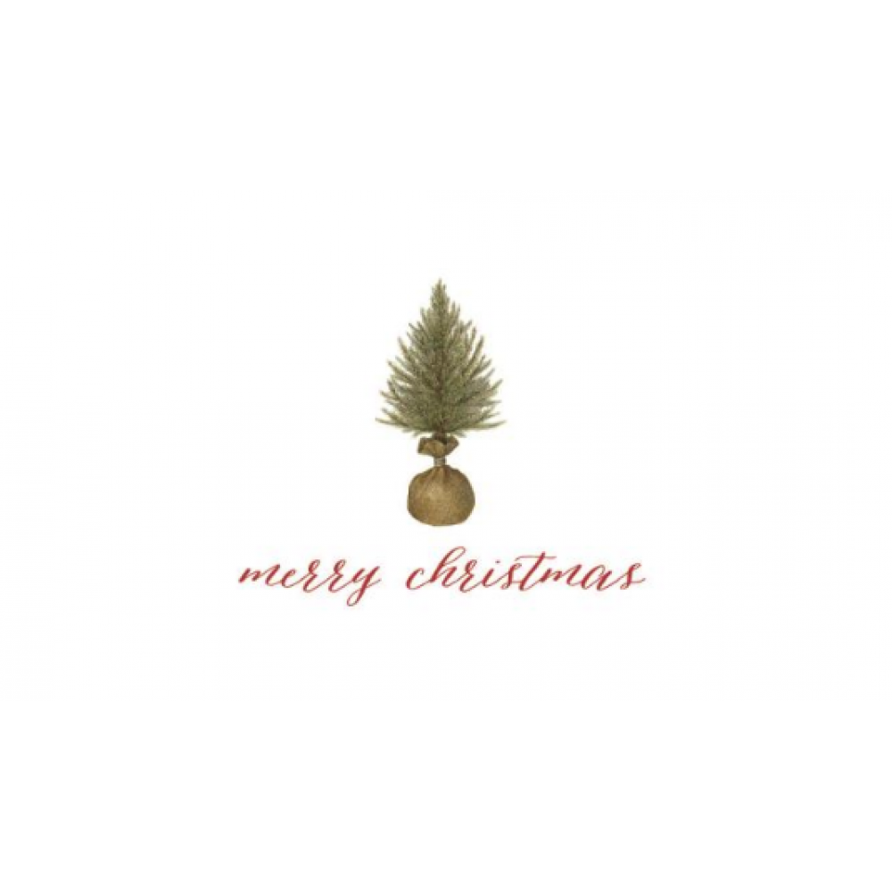 Boxed Card - Christmas - Merry Christmas Spruce