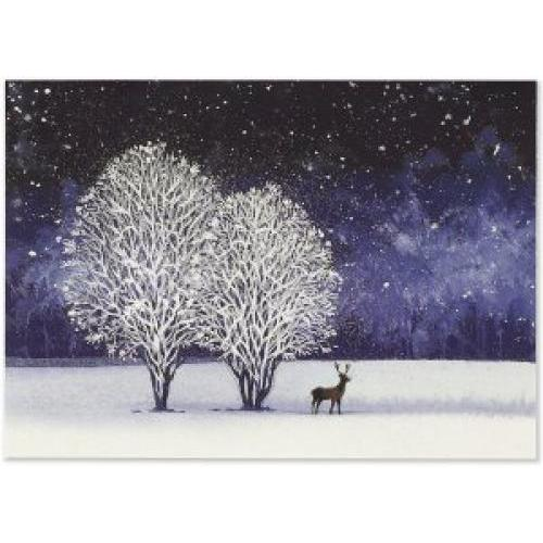 Christmas Boxed Card - Deluxe - Starry Night